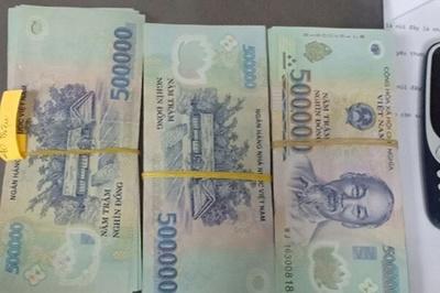Số tiền lớn trong túi của nam hành khách để quên trên máy bay