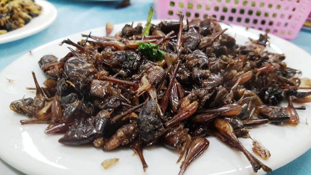 Những món đặc sản nhiều người nhìn 'sởn da gà' ở Ninh Bình