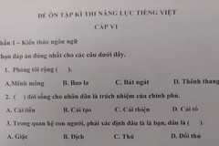 Đề thi Tiếng Việt dành cho người Nhật khiến dân mạng 'ngả mũ' về độ khó