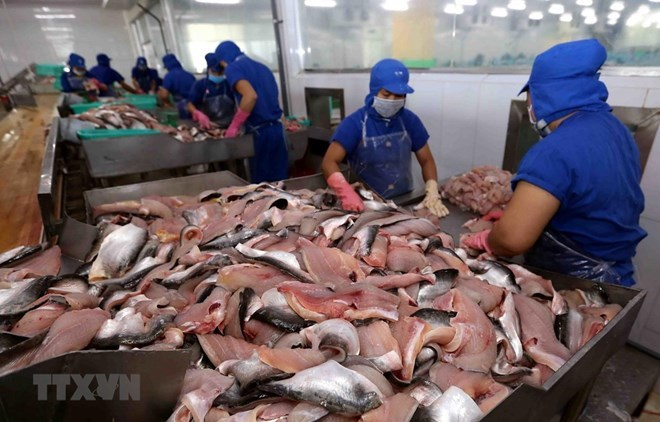 Vietnam's tra fish exports to ASEAN up 18 percent