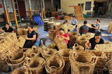 Aquatic plant creates unique handicraft items