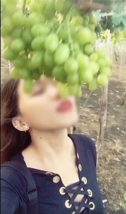Phượt thủ phá tan vườn mận Mộc Châu, cắn nham nhở quả trên cây