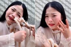 Khoe ăn bạch tuộc sống, thiếu nữ suýt rách mặt