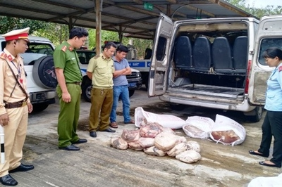 Nửa tấn thịt, mỡ động vật hôi thối đang vào Bình Định thì bị bắt