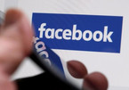 Facebook, Google tax evasion has to stop: minister