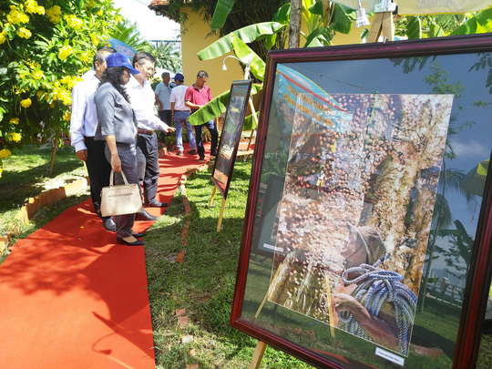 Exhibition features Nha Trang swiftlet breeding