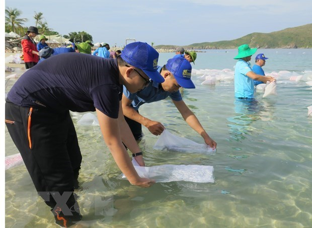 Nha Trang releases fries to regenerate aquatic resources