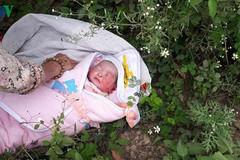 Phát hiện bé gái sơ sinh bị bỏ rơi trong rừng ở Sơn La