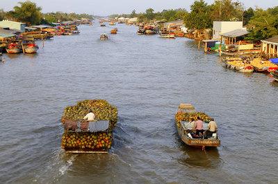 'Cây cầu dừa' nối nhịp giao thương ở TP. HCM