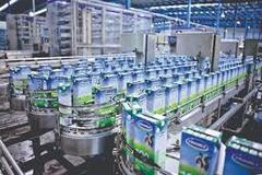 Vietnam dairy producers target Chinese market
