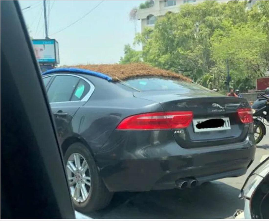 Bện rơm làm bạt phủ chống nóng cho ô tô, hiệu quả không ngờ