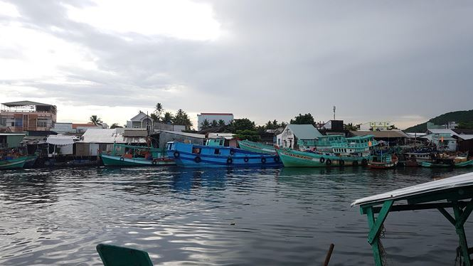 Pollution threatens Phu Quoc rivers