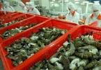 US market: shrimp export growth rises while catfish drops