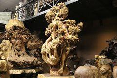 Siêu phẩm 'mai cổ' từ gỗ nu quý hiếm giá bạc tỷ của dân chơi Hà Nội