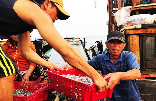 Mỗi đêm 'xúc' được 100 triệu: Dân Quảng Nam trúng đậm