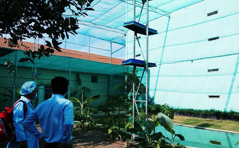 Hợp tác toàn diện để phát triển bền vững nghề nuôi chim yến