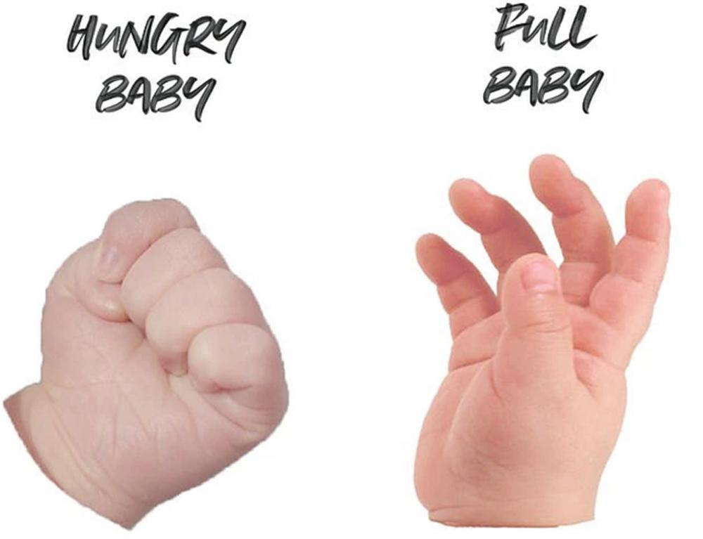 Cách nuôi con,Trẻ sơ sinh