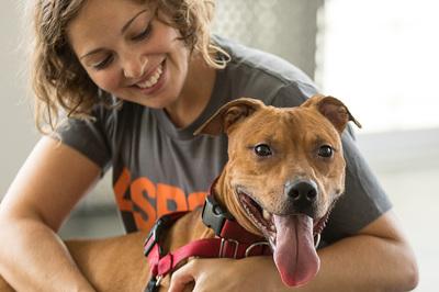 Ngày càng nhiều trường đại học cho phép nuôi thú cưng trong ký túc xá
