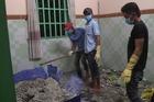 Lý do nhóm tu luyện cuồng tín ở Bình Dương đổ bê tông phi tang xác