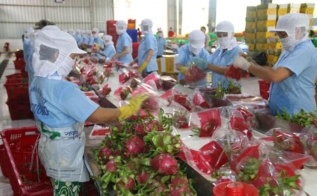 Vietnam's producers meet difficulties as yuan weakens.