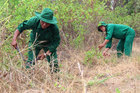 Forest watchers makes mangrove forest their homes