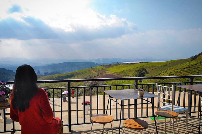 Top five coffee shops not to be miss in Da Lat city