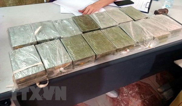Hai Duong police arrest woman for smuggling 10.5kg heroin