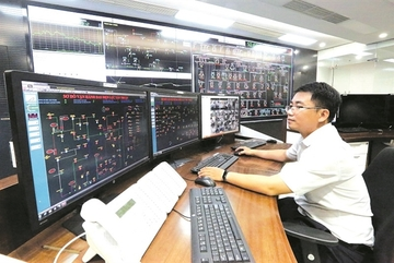Is Electricity of Vietnam making a profit or taking a loss?