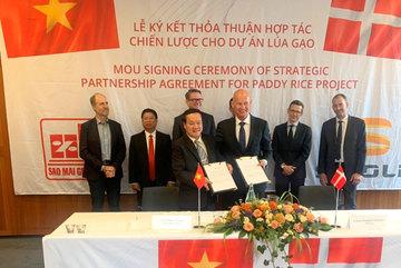 Sao Mai Group và tập đoàn Đan Mạch hợp tác chế biến gạo chuẩn quốc tế