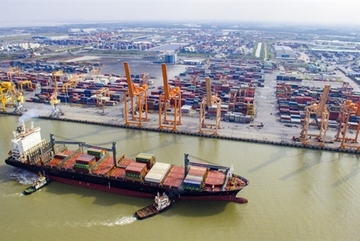 Vietnamese government to crack down on trade fraud