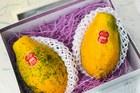 Đu đủ Nhật 1 triệu đồng/kg: Bớt lương, mua ăn giảm cân