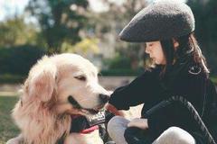 5 điều cấm kỵ khiến những chú chó không thích chủ