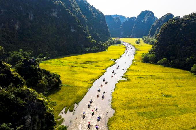 Discovering the ripening paddy fields of Tam Coc during May