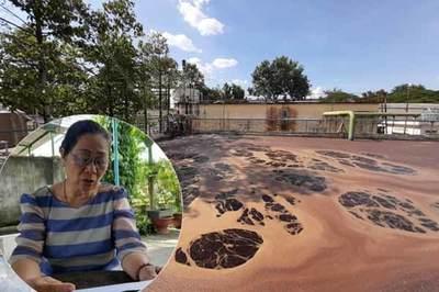 Người phụ nữ Đồng Nai gần 20 năm đi kiện công ty AB Mauri gây ô nhiễm