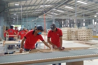 Vietnam's wood exports soar to nearly $3.12b