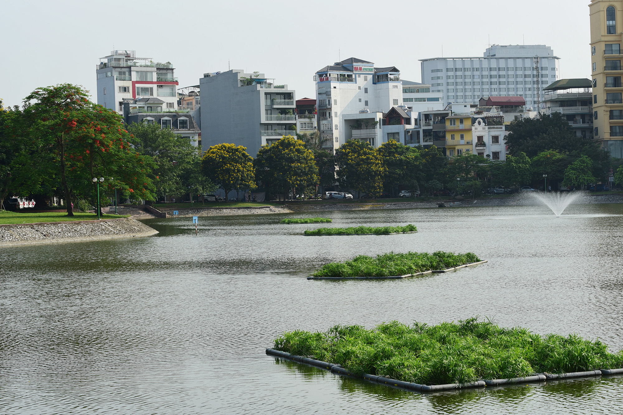 Hồ Ba Mẫu xanh trong hơn sau khi xử lý ô nhiễm