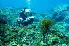 Seabed sediment in central Vietnam under threat