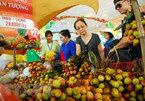 Suoi Tien Theme Park set for annual Southern Fruit Festival