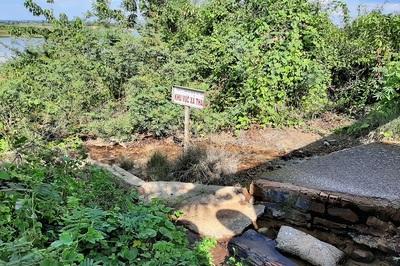 Dân tố AB Mauri xả thải chết hàng ngàn tấn cá, Đồng Nai đào tìm cống ngầm