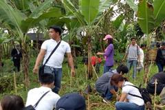 Phải trồng 10 cây xanh để được tốt nghiệp