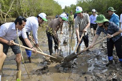 Bí thư Bạc Liêu cùng hai Thứ trưởng lội bùn trồng rừng ngập mặn
