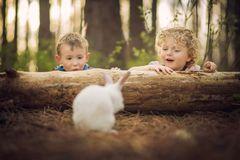 Bộ ảnh tuyệt đẹp về tuổi thơ trên nông trại