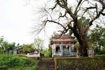 Ancient Phuoc Tich village preserves heritage