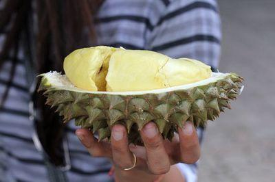 Đến nơi một trái sầu riêng có thể lên giá tới 730 triệu/trái