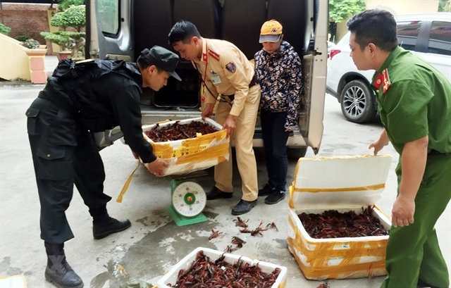 Deputy Prime Minister asks for investigation on red-claw crayfish