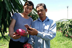 Fruit farmers strike it rich in northern Vietnam