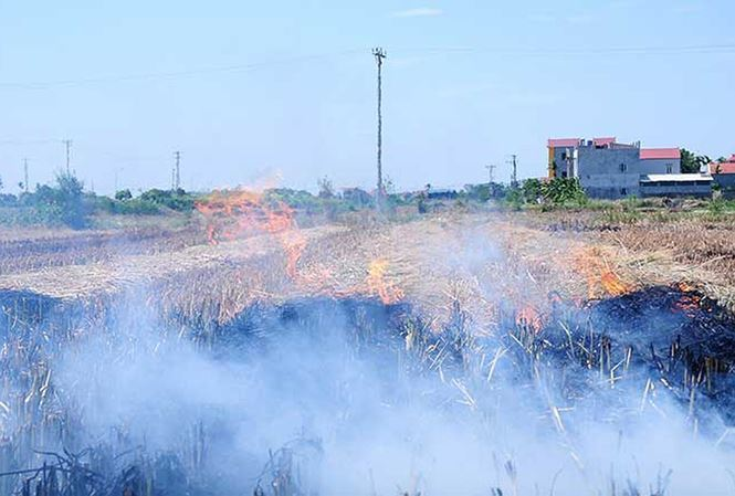 Straw burning worsens Hanoi suburban air pollution