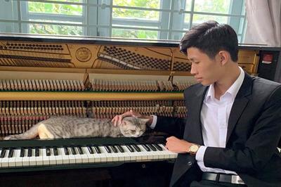 Chú mèo thích được mát-xa bằng tiếng đàn piano của thầy giáo Sài Gòn