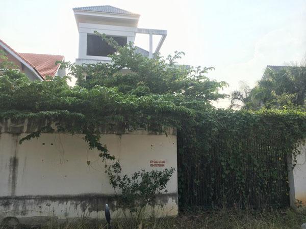 Cảnh ám ảnh trong biệt thự tiền tỷ, cỏ mọc um tùm ở Sài Gòn