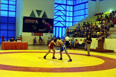 Wrestling tournament for young athletes held in Tuyen Quang